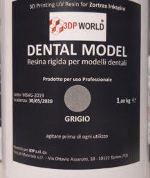 Resina Dental Model